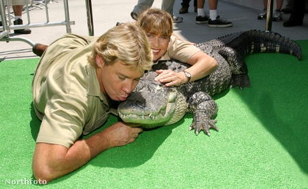 Steve Irwin, neje, Terri Irwin, és egy krokodil