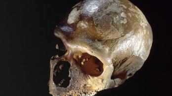 Izgalmas dolgok derültek ki a neandervölgyi emberről