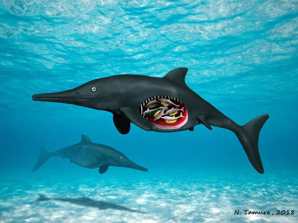 pregnant-ichthyosaur-c-nobumichi-tamura