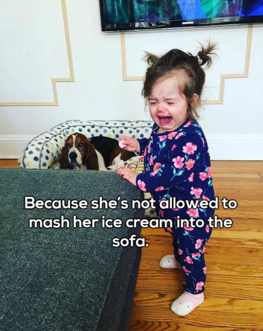 Nem kenhette bele a fagyiját a kanapéba.