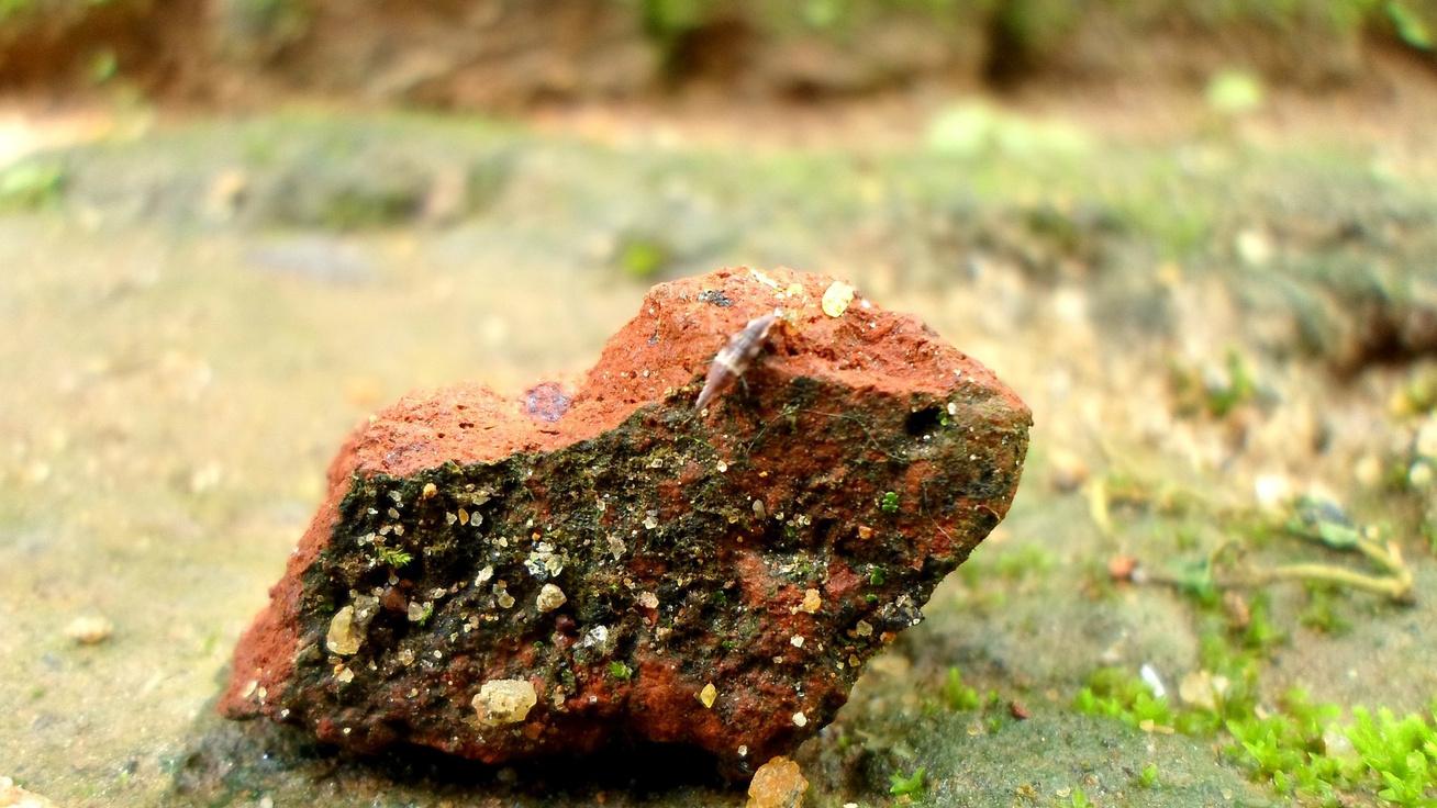 Azt hitte, csak egy kődarab: a kertész 700 éves relikviára bukkant