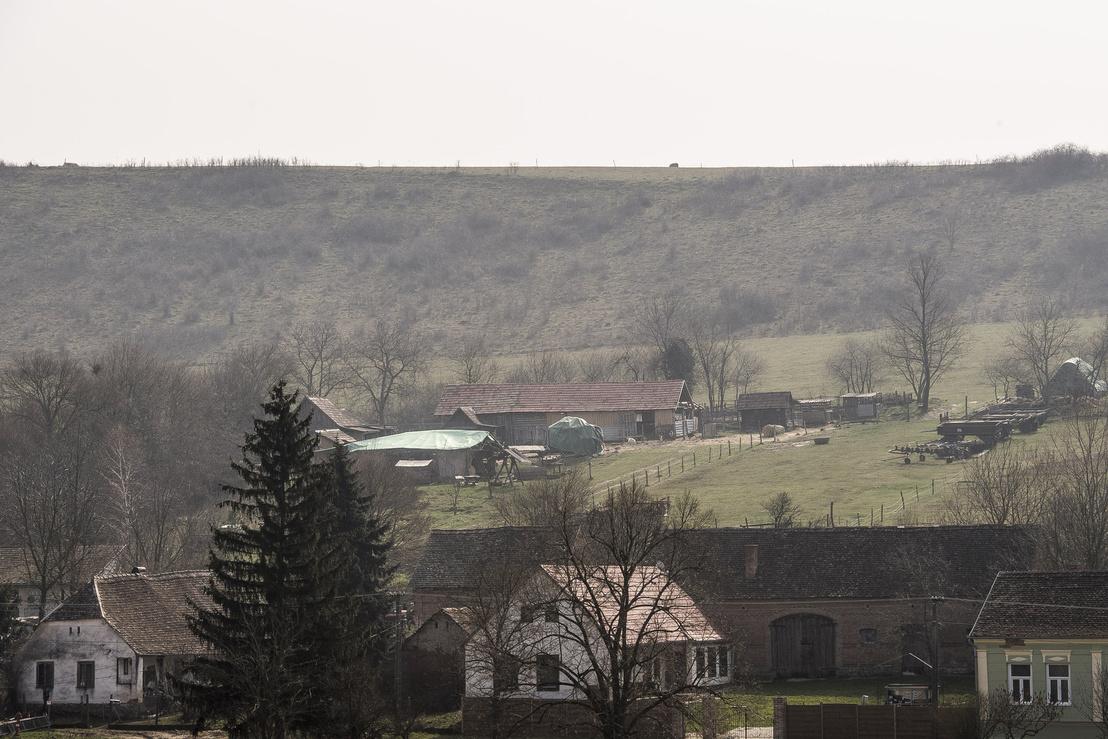 A farm látképe a szemközti domboldalból.