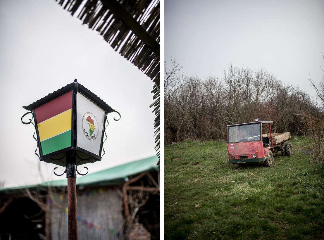 Afrika térképe a lámpaoszlopon és egy '69-es svájci autó a kertben.