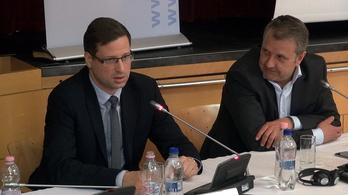 Gulyás: A magyar jogorvoslati rendszer remek, Molnár: Nanana