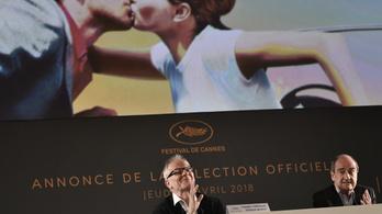 Egy magyar film sem került még be Cannes-ba