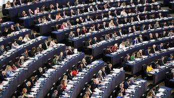 Elindult a vita az EP-ben a magyar hetes cikkről