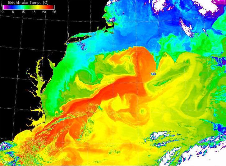 A Golf-áramlat hőképe 2001-ben