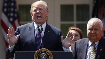Trump elhalasztotta a szíriai válaszcsapást
