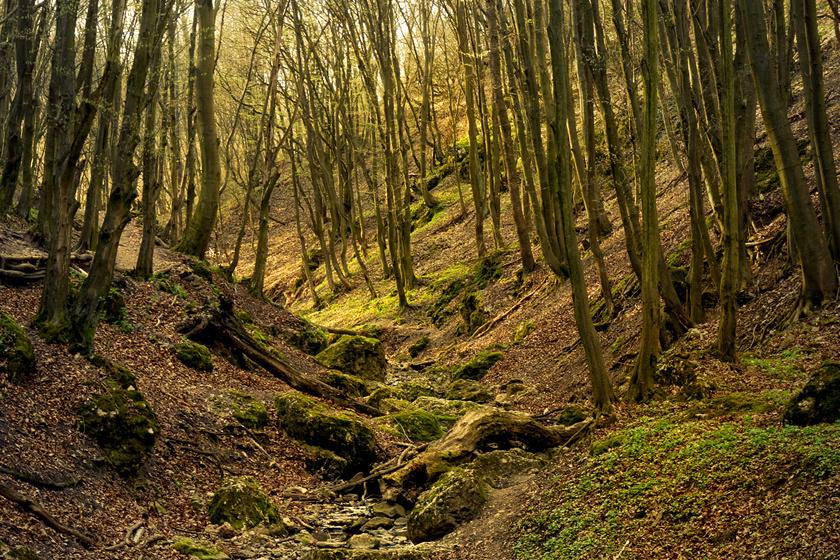 Pilisszentkereszt felől könnyen megközelíthető a Dera-patak vágta festői szurdok, mely körül több barlang is található.