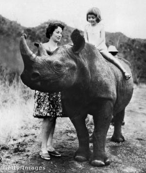 Daphne Sheldrick kislányával