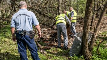 Rabok takarították a X. kerületi erdőt
