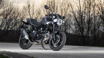 Minimál fejlesztést kap csak a Suzuki SV650 és V-Strom 650