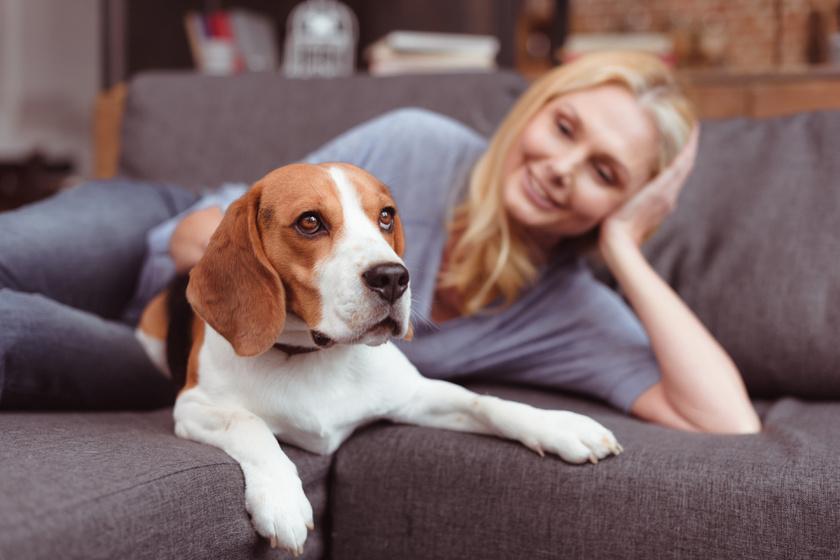 A kutyatartás a hosszú élet titka? Meglepő dologra jöttek rá a tudósok