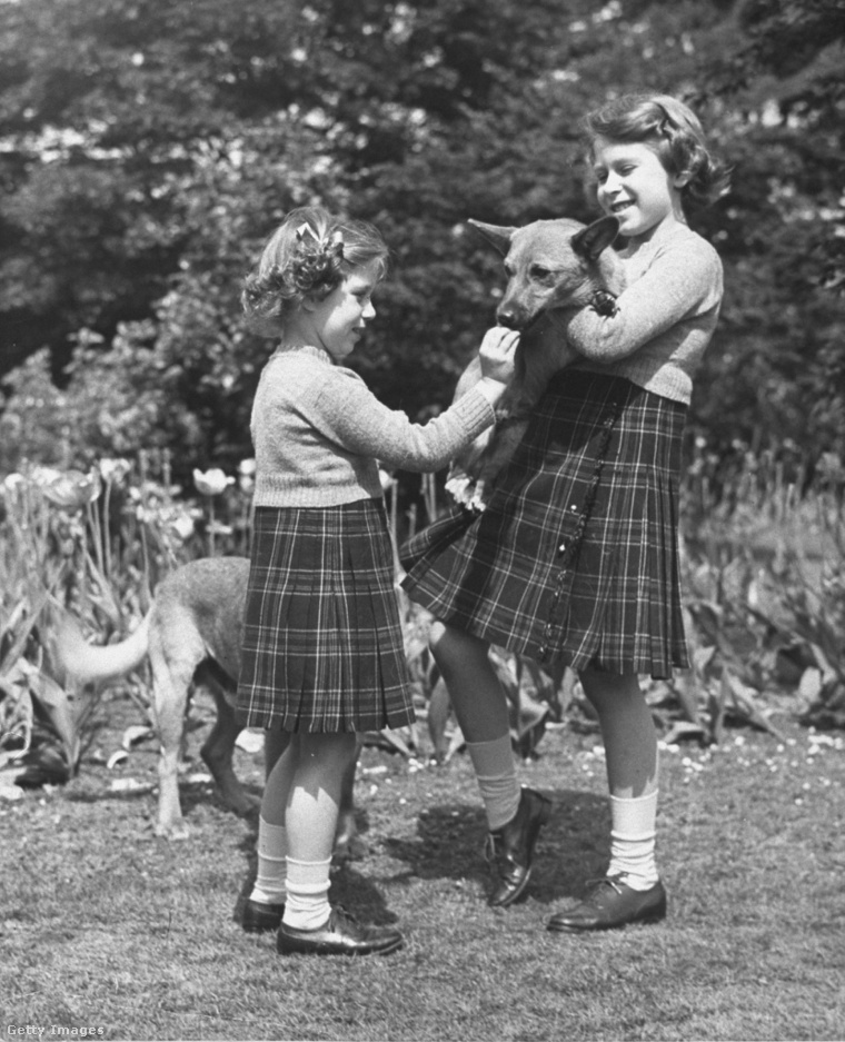 1936-ban II. Erzsébet egy corgit tart, a szeretet már megvolt, de ez még nem a saját kutyája, az első kutyáját, Susant 1944-ben kapta.
