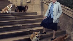 Egy korszak vége: meghalt II. Erzsébet utolsó corgija