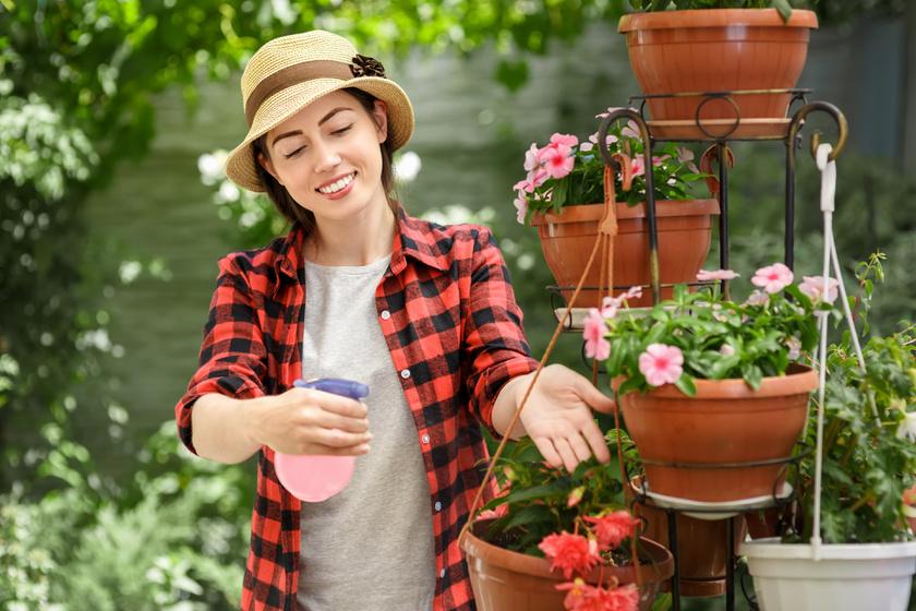 Házi növényvédő szerek: 10 recept, amit ismerni kell a kártevők ellen