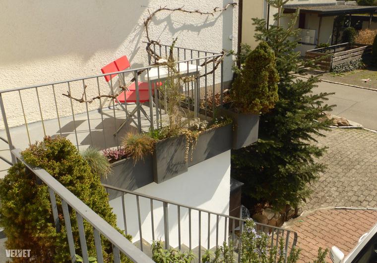 A szóban forgó terasz. A lépcső a lakás bejáratához vezet fel, a csomag a lépcső tetején várta órákig, hogy észrevegyem.