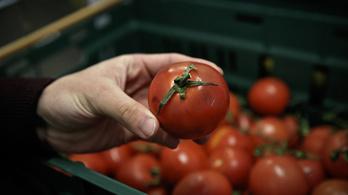 Egészséges táplálkozás=élelmiszerpazarlás?