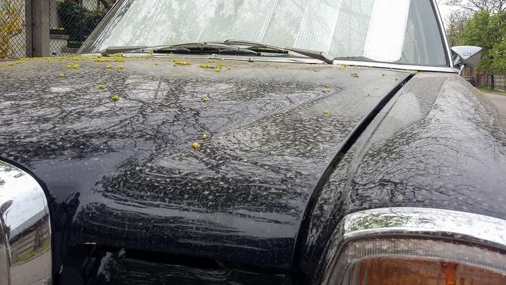 Afrikai eső után, két nappal korábban, egy vagyonért mosattam
