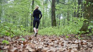 Miért megy egy svájci nő sötétedéskor egyedül az erdőbe?