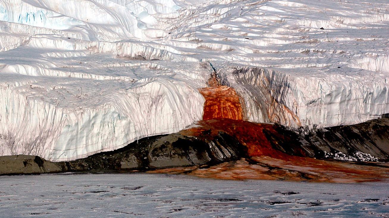 Mintha vér csorogna a jégből: az antarktiszi Vér-zuhatag ijesztő, de megmagyarázható jelenség