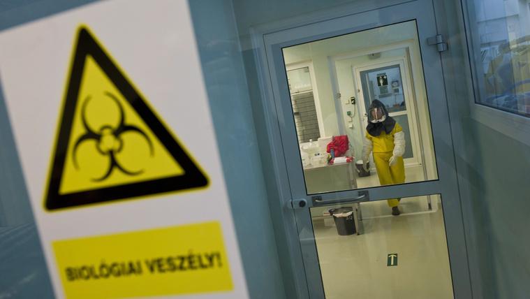 WHO: Ebola miatt elkülönítőbe került egy laboratóriumi tudós Budapesten