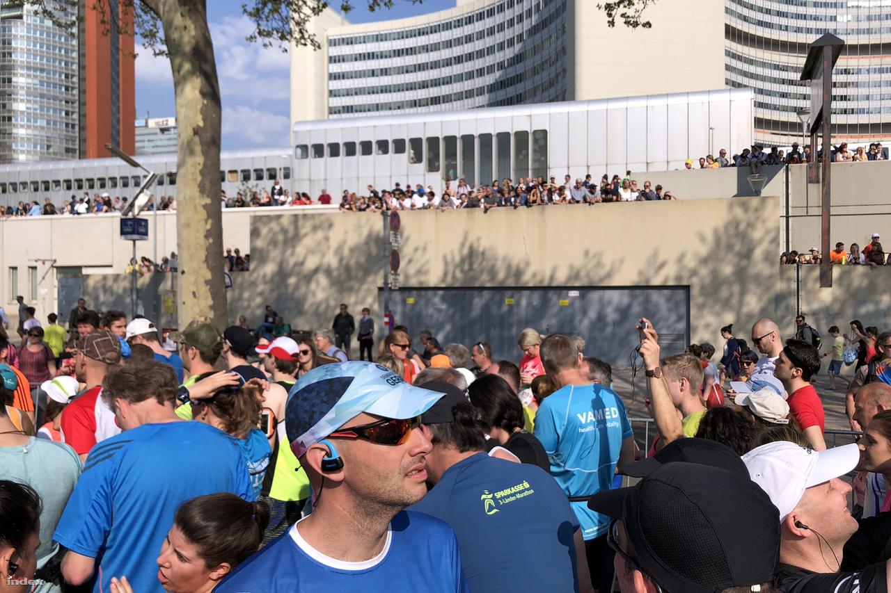 A 35. Vienna City Marathon a Kaiserwasser-öböl mellől, az ENSZ-központtól indult. A startnál irgalmatlan tömeg volt.