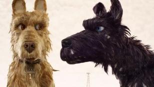 A filmtörténelem 5 legkedvesebb kutyás storyja