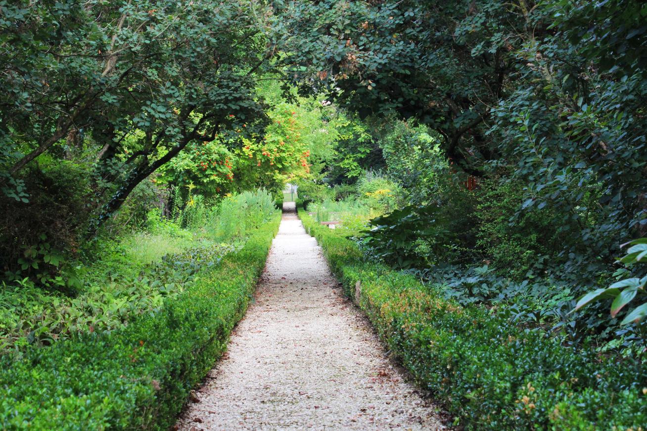 5eea23a741 Az egyik legszebb, leggazdagabb magyar falu, ahol alig 600-an élnek:  kastély, arborétum és termálfürdő is van