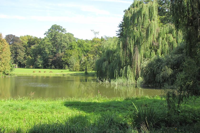A vácrátóti arborétum festői kertje Magyarország legnagyobb élőnövényotthona. Hangulatos séták, növénybemutatók és megannyi csoda vár egész évben!