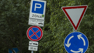 Állati ravasz módon cselezte ki a hatóságokat egy tilosban parkoló nő