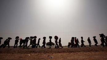 Migrációs katasztrófát lát az ENSZ világélelmezési felelőse