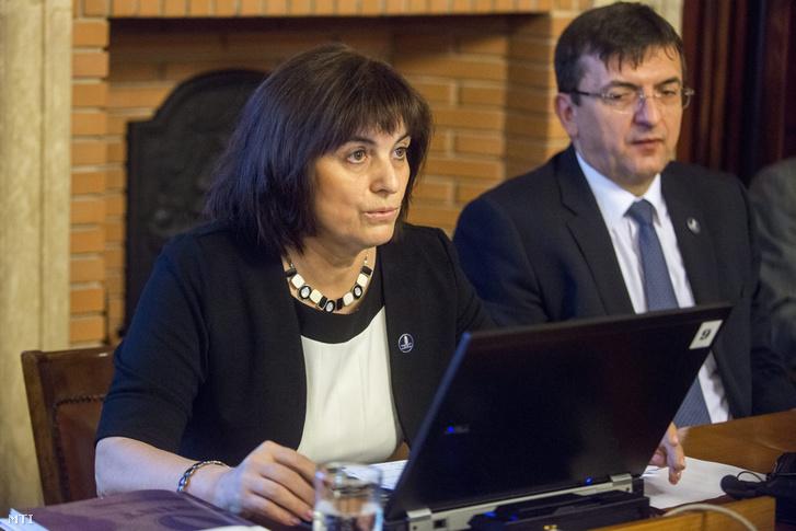Holman Magdolna az Állami Számvevőszék (ÁSZ) felügyeleti vezetője sajtótájékoztatót tart a 2014. évi központi költségvetés végrehajtásának ellenőrzéséről az ÁSZ fővárosi székházának klubtermében 2015. augusztus 31-én