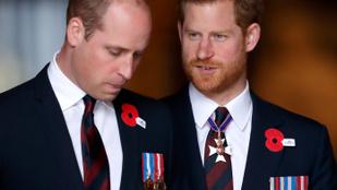 Megvan, ki lesz Harry herceg esküvői tanúja