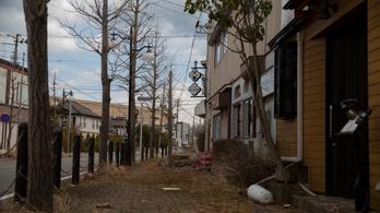 Japánban fél Magyarországnyi terület áll gazdátlanul