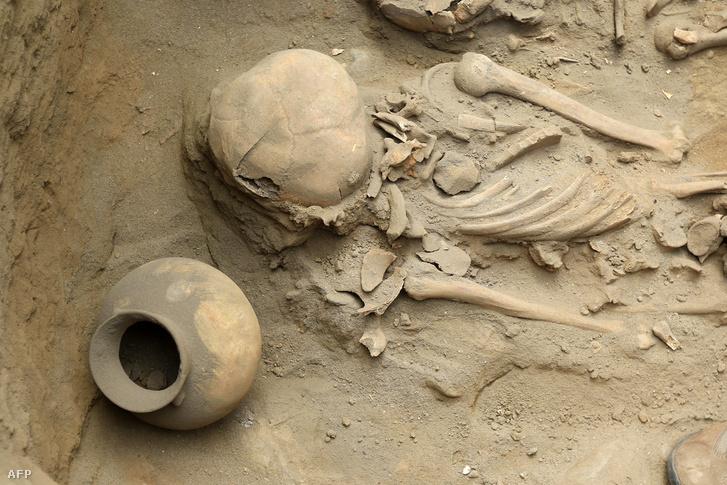 Emberi maradványok egy korábbi feltárásnál a helyszínen