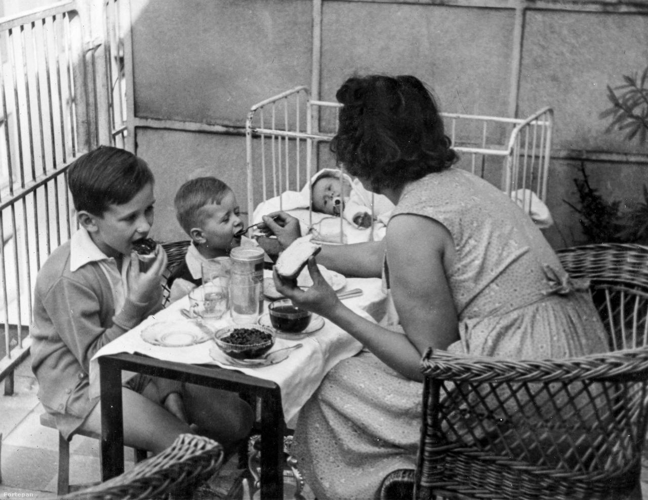 Galamb utca 5, Budapest, 1956