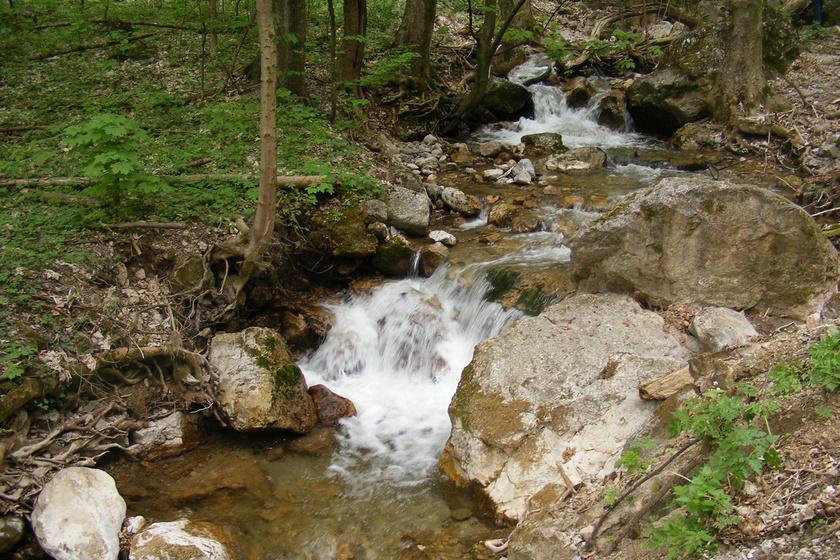 szar patak