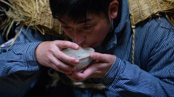A japánok feltalálták az igazi faszeszt