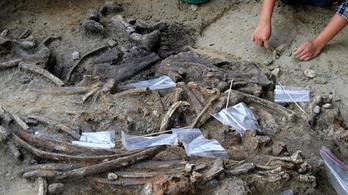 Egy 700 ezer éves orrszarvúlakoma írja át az emberi vándorlások történetét