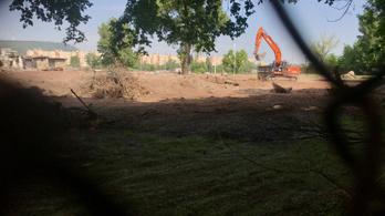 Tarlós: Eljárást indítunk a kivágott margitszigeti fák miatt