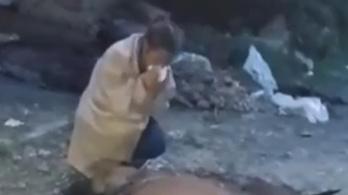 Brutális horrorvideó kering arról, hogy végeztek ki egy Nemzeti Vágtán megsérült lovat