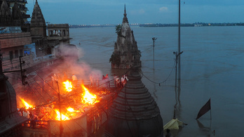 25 ezer húsevő teknőssel akarták megtisztítani a Gangeszt a hulláktól