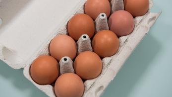 Több mint 20 százalékkal drágult a tojás egy év alatt