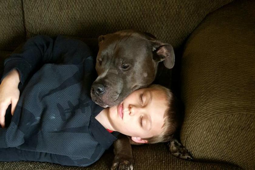 Az éjszaka közepén gyulladt ki a család háza: ha nincs a kutyájuk, mind odavesztek volna