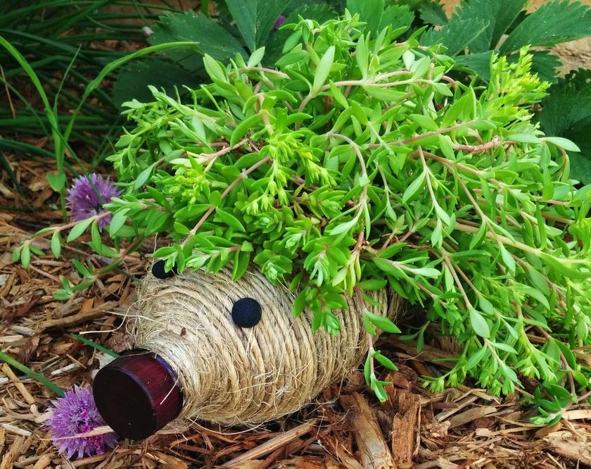 Vond be madzaggal, ültess bele egy hosszúkás levelű növényt, és tedd ki a kertbe a virágtartó sünt!