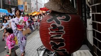 Egy japán kormánypárti képviselő szerint az egyedülálló nő tehertétel az országnak