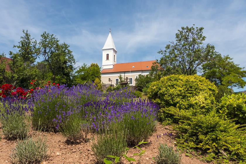 Paloznak ősi települése máig hagyományos képet őriz. A Balatonfüredhez közeli, nagyjából 430 fős falucskában a vincellér- és parasztházak megcsodálása mellett az Olaszrizling tanösvényt is bejárhatod.