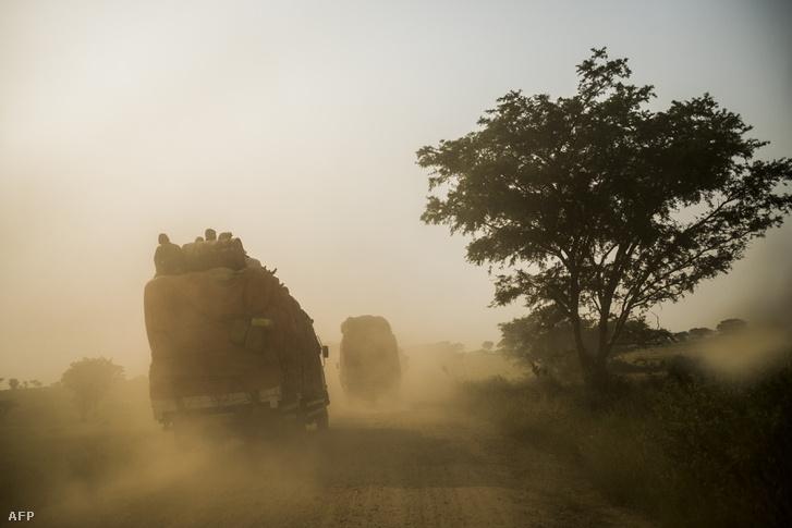 A Virunga Nemzeti Parkon át vezető úton rendszeressé váltak az emberrablások, ezért 2016 óta a hadsereg ellenőrzi a turisták által kedvelt útvonalat. A 2016. július 17-én készült felvételen a kongói hadsereg katonáit szállító teherautók járőröznek a Kiwanja és Kanyabayonga nevű falvakat összekötő útvonalon, a Park területén.