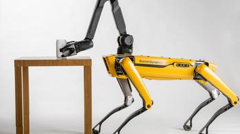 Jövőre már kapható lesz a világ legügyesebb robotkutyája